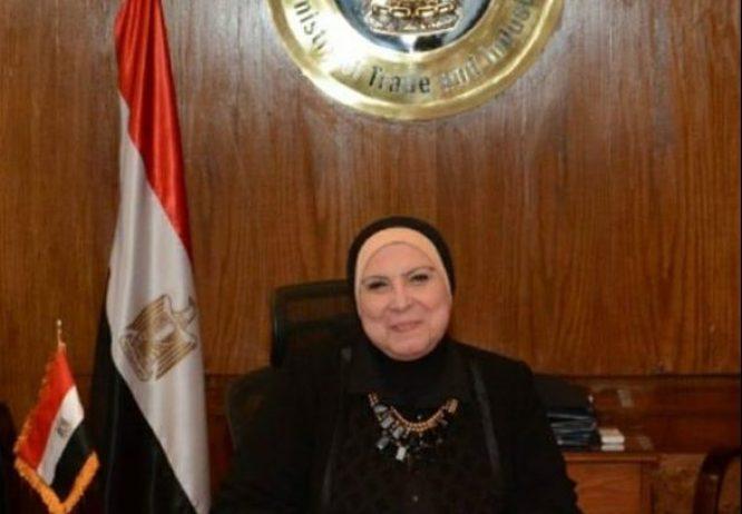 وزيرة التجارة تصدر قراراً بتعيين اللواء حافظ حسن مساعداً للشئون المالية والإدارية