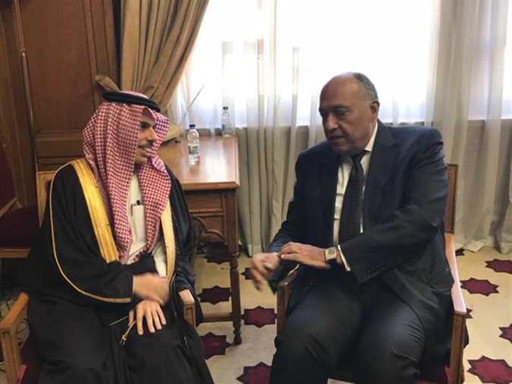 وزير الخارجية ونظيره السعودي يعقدان جلسة مباحثات بقصر التحرير