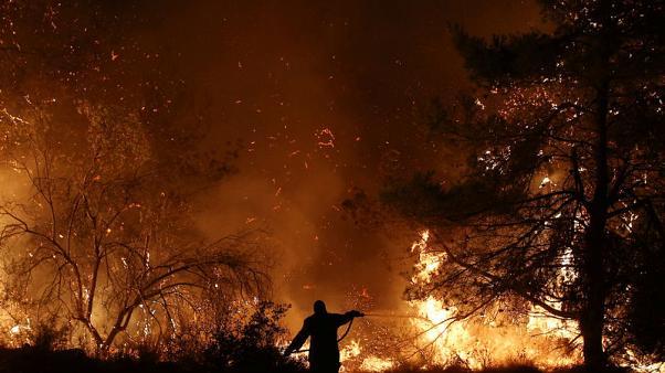 اليونان: إخلاء منطقة ساحلية من مئات الأشخاص إثر اندلاع حريق غابات