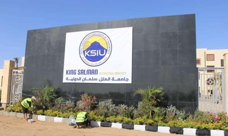 الحكومة تنفي استبعاد جامعة الملك سلمان الدولية من تنسيق الجامعات للعام الجامعي الجديد