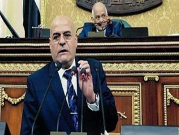 نائب: المشروعات القومية في عهد الرئيس السيسي غيرت وجه مصر
