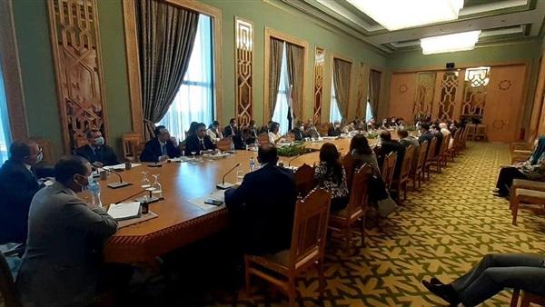 لجنة متابعة العلاقات المصرية الأفريقية تبحث استئناف التحرك على الساحة