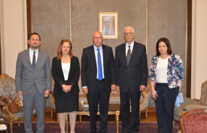 بعثة الجامعة العربية لمتابعة انتخابات الشيوخ تلتقى نائب وزير الخارجية