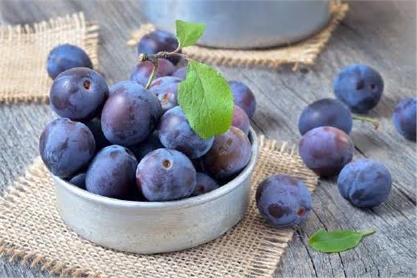 البرقوق ثمار شهية بفوائد مذهلة لصحة الجسم