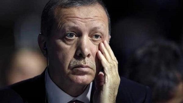 صفعة مصرية على وجه غلمان أردوغان.. حلفاء الشيطان