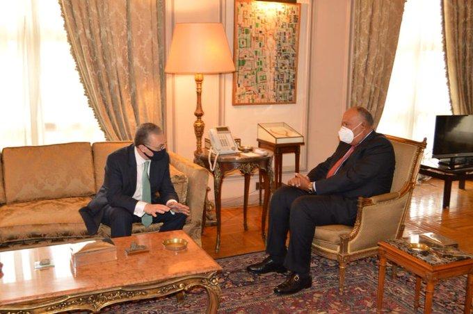 وزير الخارجية ونظيره الأرمينى يعقدان جلسة مباحثات بالقاهرة