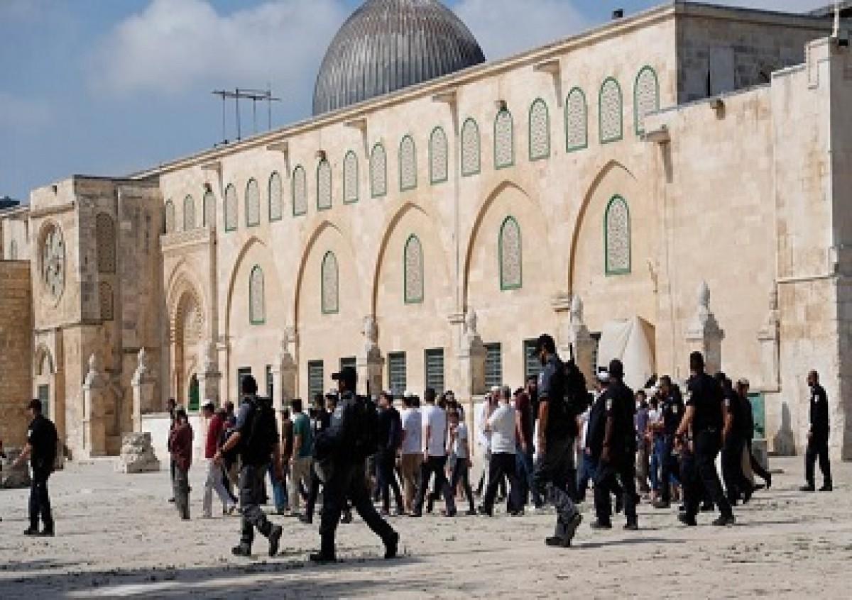 مستوطنون يقتحمون المسجد الأقصى.. وشرطة الاحتلال تدنس الجامع القبلى