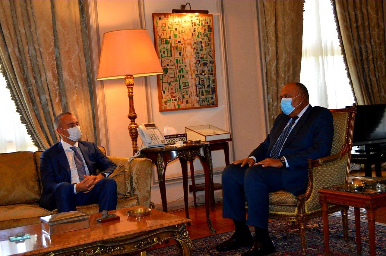 وزير الخارجية وملادينوف يبحثان مستجدات الشأن الفلسطيني
