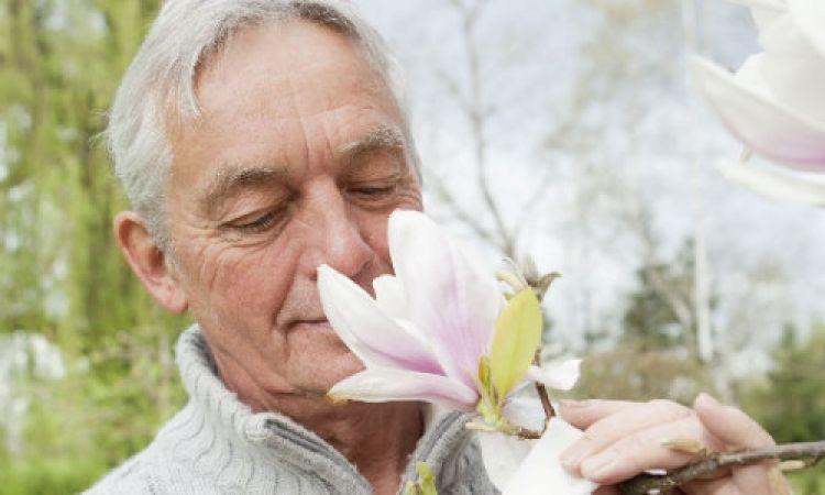 أبحاث: تراجع كفاءة حاسة الشم لدى الكبار قد يؤدى إلى مخاطر الوفاة