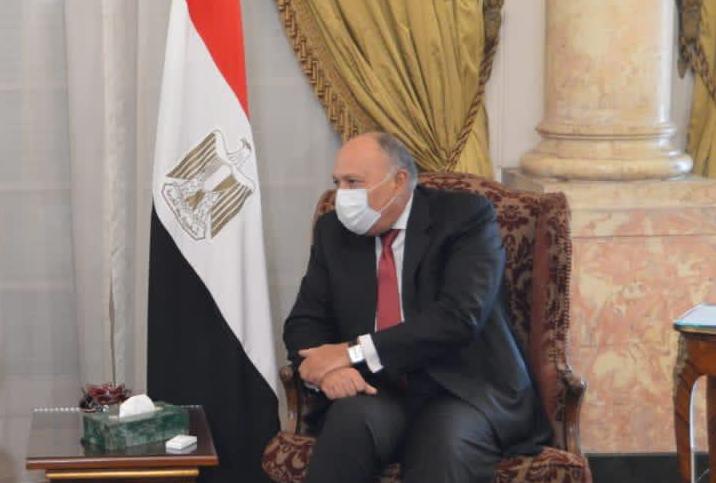 وزير الخارجية يسلم أمير الكويت رسالة من الرئيس السيسى