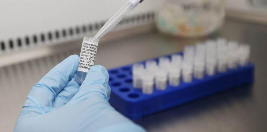 دراسة بريطانية تكشف عن مادة فعالة ضد الإنفلونزا وفيروس كورونا