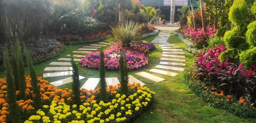 الزراعة: معرض زهور الربيع الـ 88 أول مارس في حديقة الاورمان النباتية بالجيزة