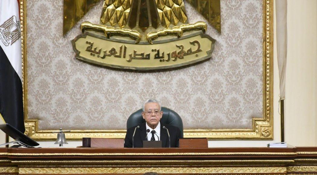 النواب: ثورة 30 يونيو شهادة ميلاد «الجمهورية الجديدة»