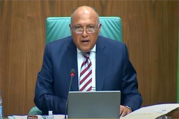 فيديو| نص كلمة وزير الخارجية أمام الدورة العادية لمجلس جامعة الدول العربية