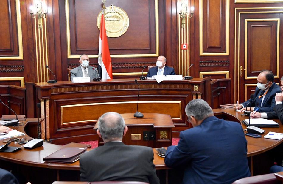 """وزير الري يوضح لـ """"الشيوخ"""" حجم موارد إثيوبيا المائية"""
