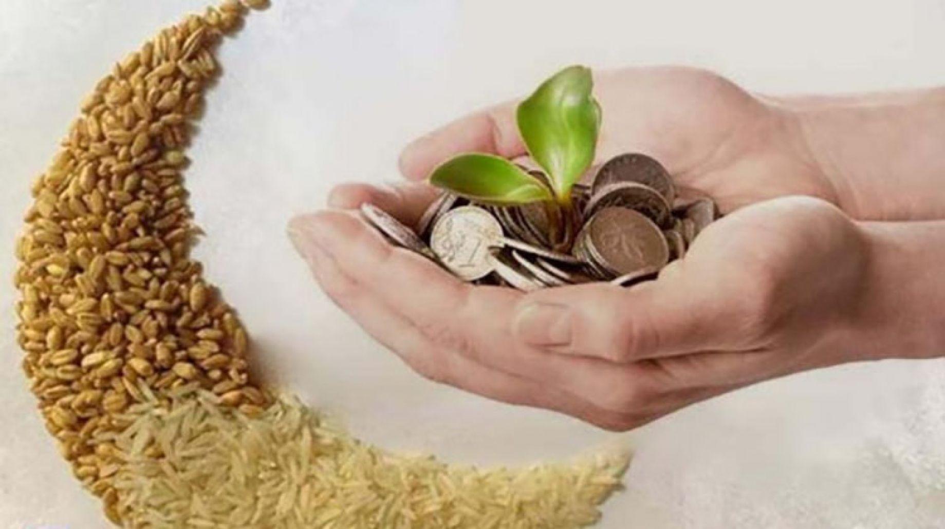 الحد الأدنى لزكاة الفطر هذا العام 15 جنيهًا.. ويجوز إخراجها نقدًا