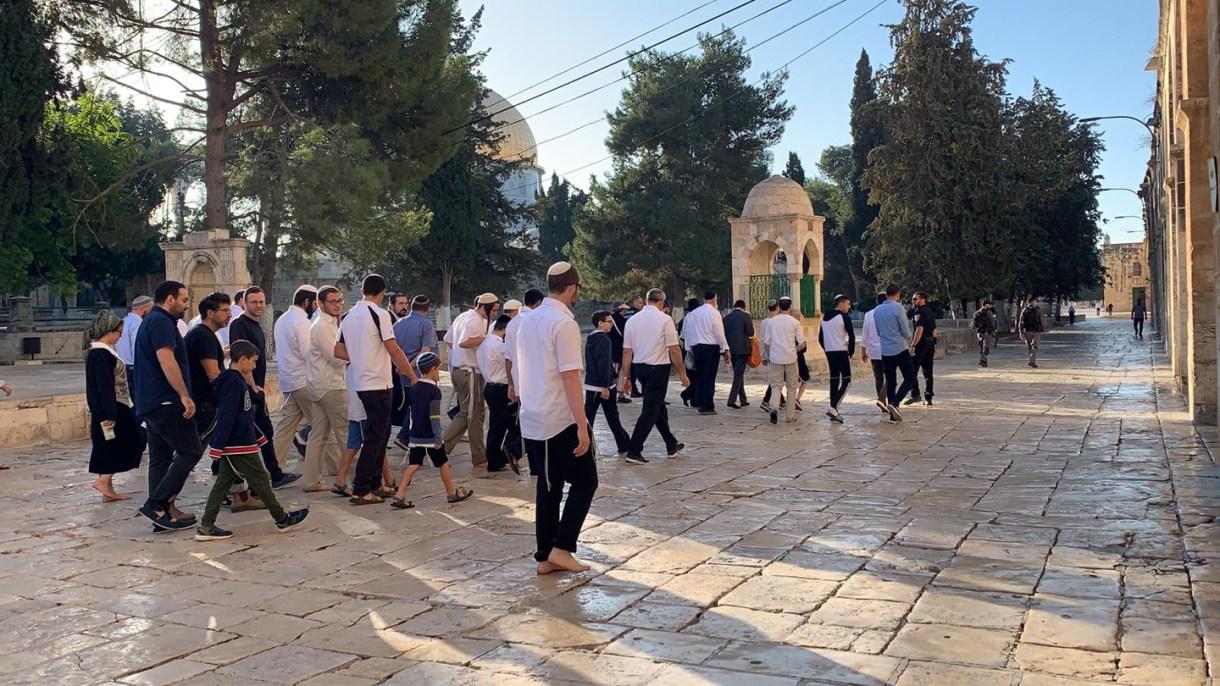 مصادر| عشرات المستوطنين يقتحمون «الأقصى» تحت حراسة شرطة الاحتلال