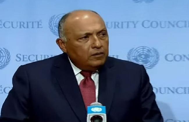 وزير الخارجية: الخطوة التالية حول سد النهضة تتوقف علي قرار مجلس الأمن