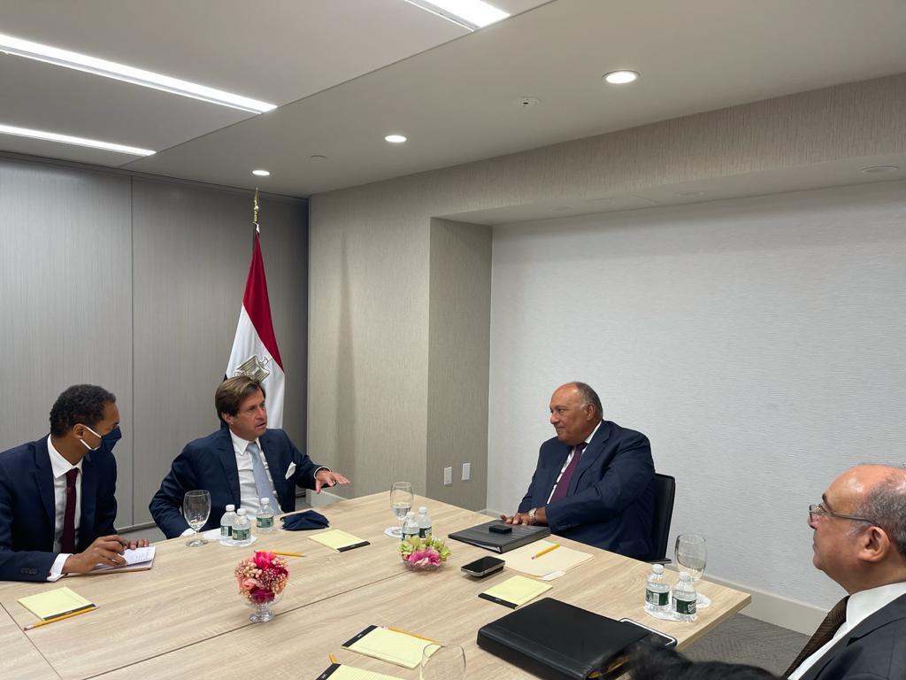 وزير الخارجية يلتقى رئيس مجلس الأمن لشرح أبعاد موقف مصر في قضية سد النهضة