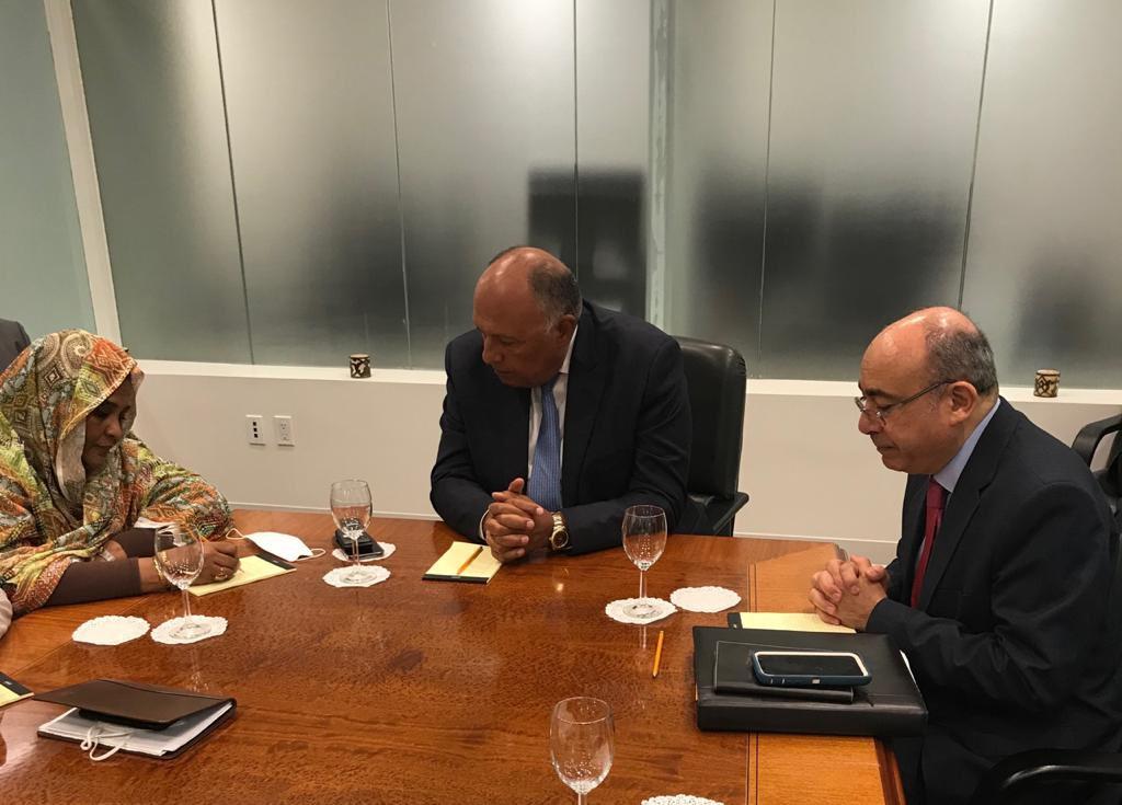 تنسيق مصري سوداني في الإعداد لجلسة مجلس الأمن حول سد النهضة